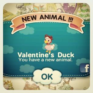 Tiny Farm - It's the Valentine's Duck!