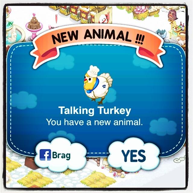 Talking Turkey!