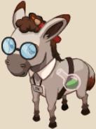 Talking Donkey
