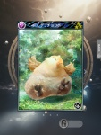Mobius Final Fantasy - Fat Chocobo