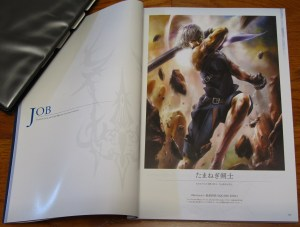 Mobius Final Fantasy First Anniversary Collections - Job section